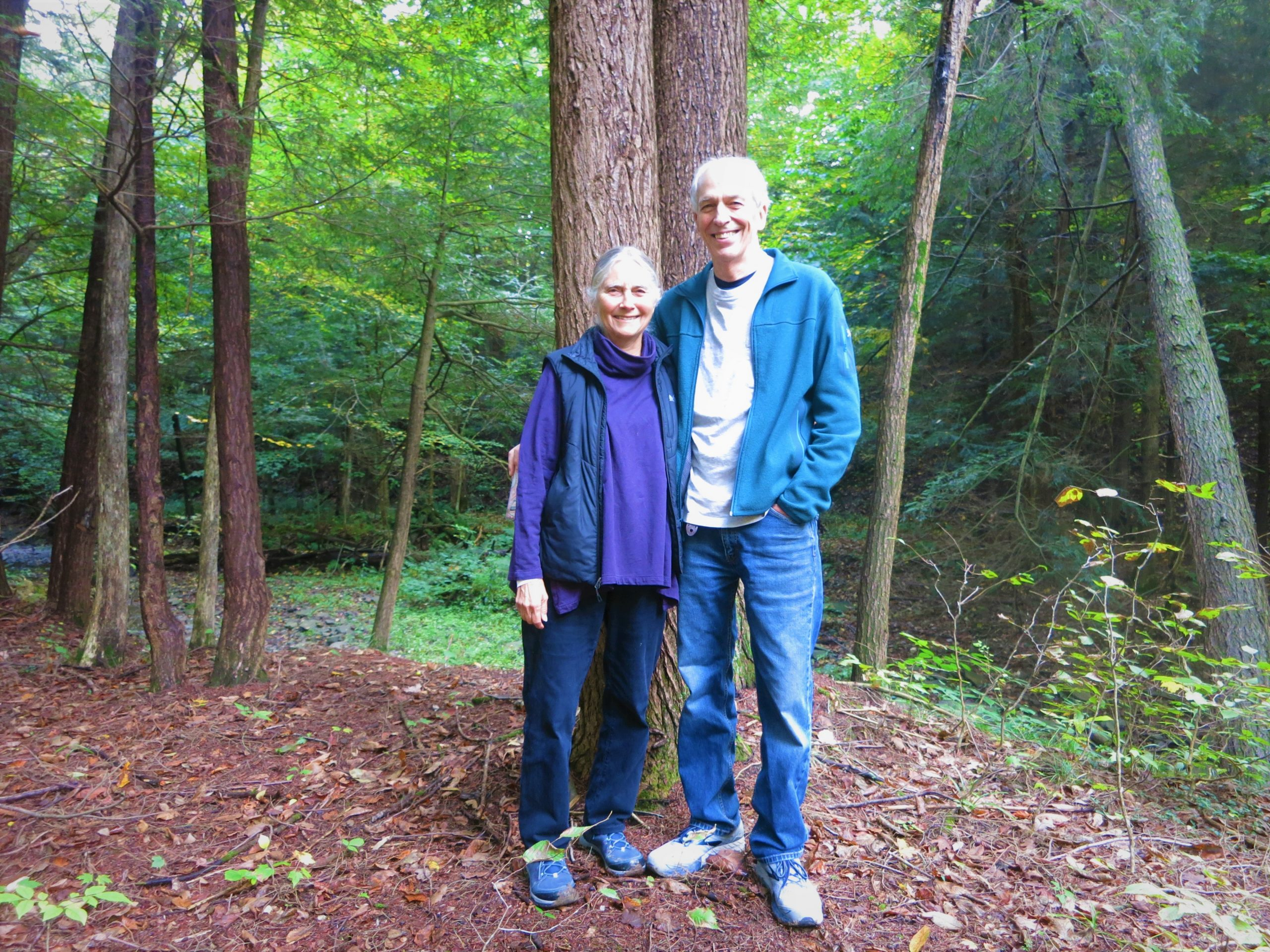 Forest Conservation Planning